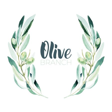 Watercolor olive branch. Sketch of olive branch on white background Ilustração