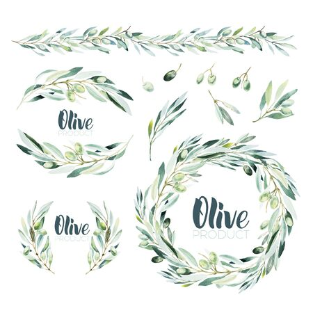 Watercolor olive branch. Sketch of olive branch on white background Imagens