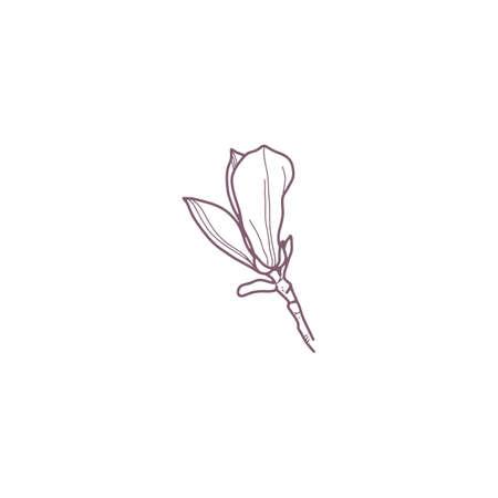 Hand drawn magnolia flowers for gritting or wedding card Reklamní fotografie - 156376205