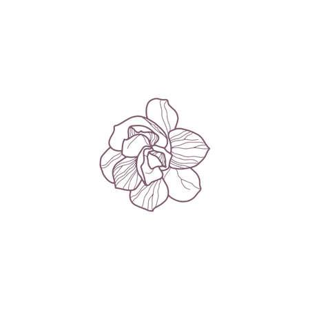 Hand drawn magnolia flowers for gritting or wedding card Reklamní fotografie - 156376211