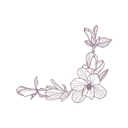 Premade arrangement magnolia flowers. Hand drawn magnolia for gretting card
