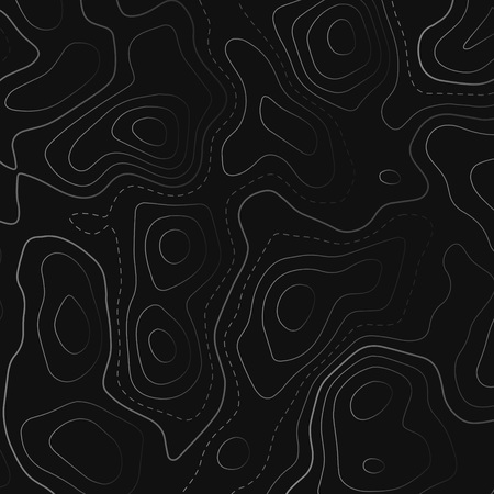 topographic map in black background