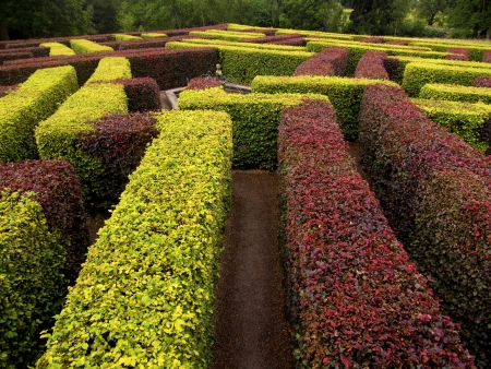 garden labyrinth green and red Stock Photo