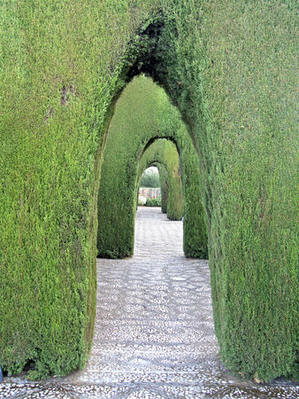 Alhambra Granada decorative botanical  garden with bush arches outdoor Editorial