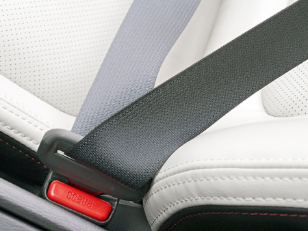 fasten: fasten seat belts in the car for your safety