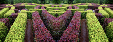 edgerow symmetrical garden labyrinth green and red panoramic view Stock Photo