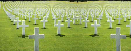 cemetery of the Americans in Florence, green grass and crosses