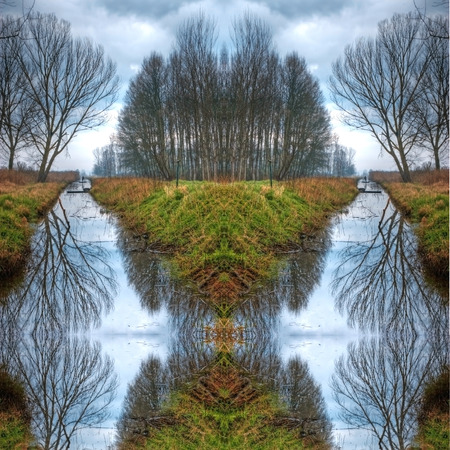 rower in a swamp with trees and reflection Stock Photo