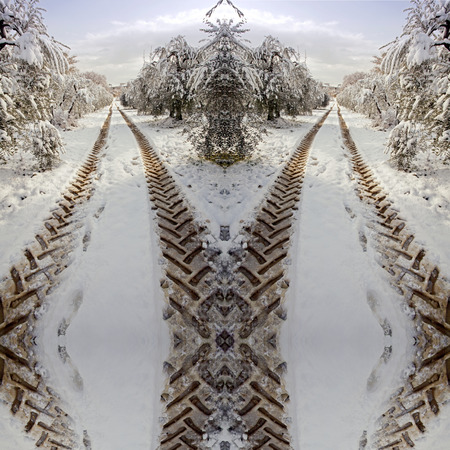 surreal symmetric tractor imprints   on a country road in snow , winter Stock Photo