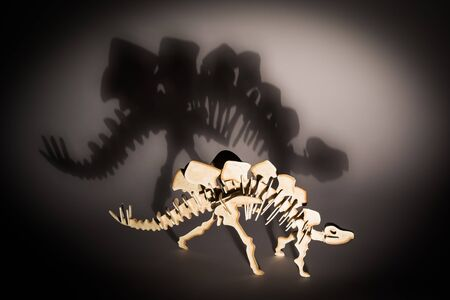 stegosaurus: un hueso de stegosaurus Foto de archivo