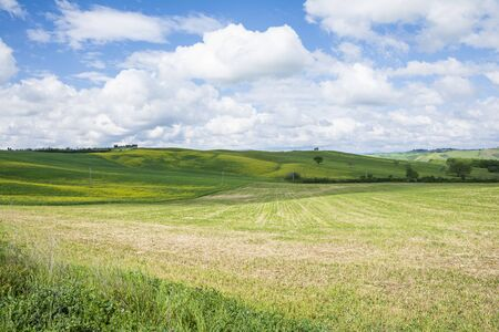 classic Tuscany landscape with hills,cipress and field during a sunny day. Stock Photo