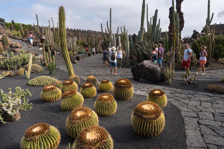 Lanzarote, Spain - August 7,2018: people strolling inside the famous cactus garden in Lanzarote during a cloudy day