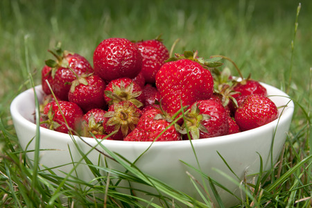 bowl full of strawberries on a grass