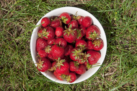 Top view of a bowl with strawberries on a grass