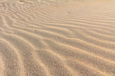 Beautiful golden sand ripple at the beach. sand dune. patterns on golden sands. Nature background. beach sand taken in Sardinia Italy. Banco de Imagens