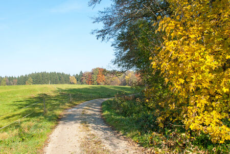 European Country Pathway II photo