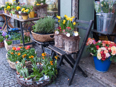 Flower Shop with Daffodils II photo