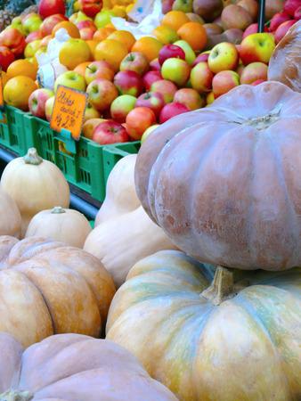 European Pumpkin and Fruit Market photo