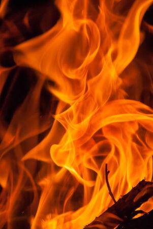 Wood Fire Flame  photo