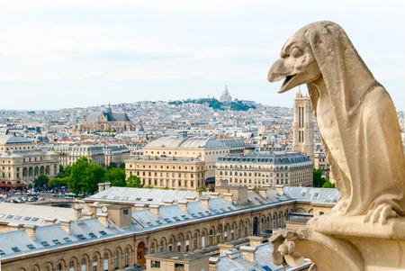 프랑스 파리에서에서 노 틀 담 성당 상단에 조류처럼 석상.