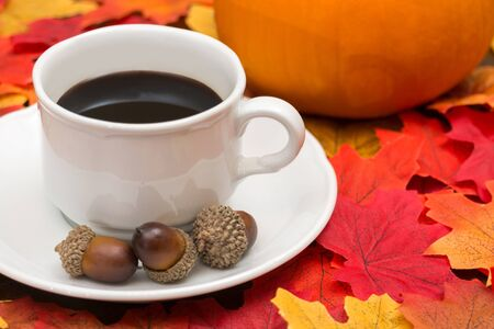 Coffee Cup, Sugar Bowl, Pumpkin, and Leaves Herald the Coming of Autumn IX