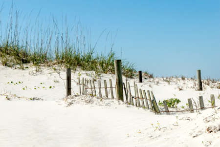 shorelines: Sand Fence on Beach Dunes Stock Photo