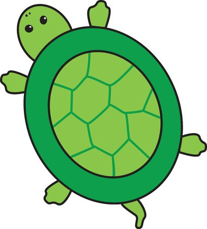 An illustration of a green turtle. Çizim