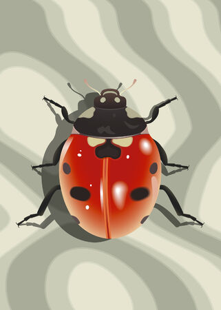 Ladybird on surface with abstract texture