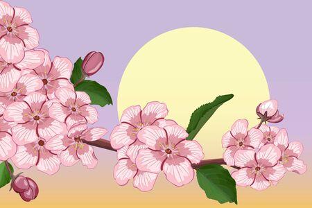 abloom: Albaricoque floreciente rama contra la luna Vectores