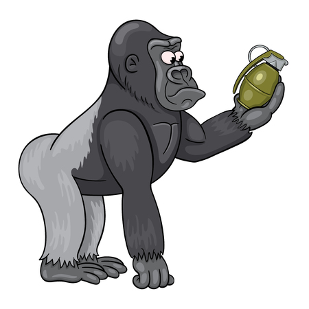 Cartoon male of gorilla in perplexity is looking at the grenade in his hand. Funny cartoon character.
