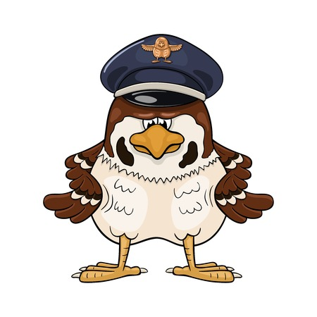 Funny cartoon sparrow in pilot service cap looking severely and with wings akimbo.