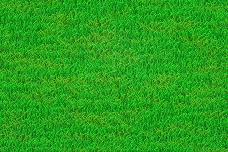 Green lawn illustration. Realistic grass texture.