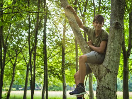 Happy ethnic teenager in casual clothes sitting on tree fork and looking at camera on sunny summer day in green park