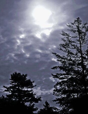 Early morning sky with dramatic clouds