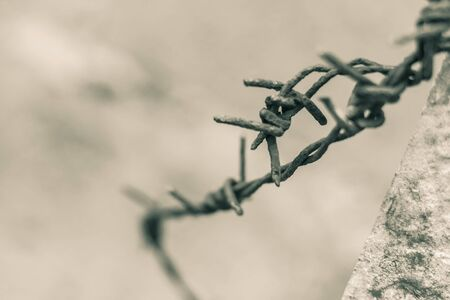 Old and rusty barbed wire on a pole.