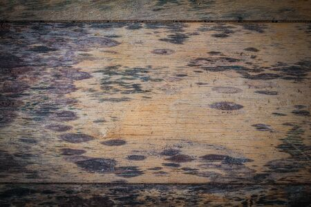 black mold: Background old wooden plate with black mold Stock Photo