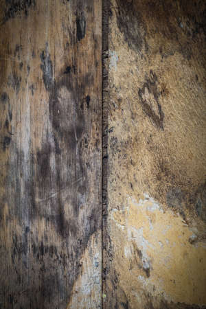 black mold: Background old wooden plate with black mold because of moisture.