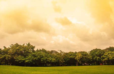 warming: Lawn and natural global warming.