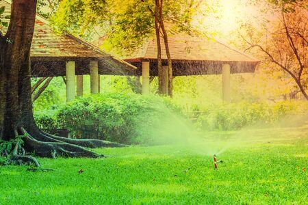 sprinklers: Sprinklers are spraying water in the gerden