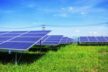 Solar panels on green grass with blue sky.
