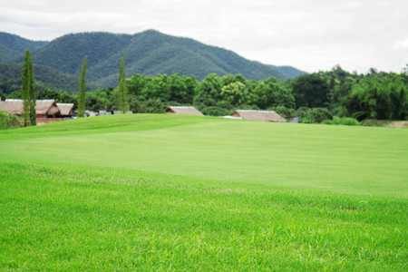Lawn in the park with mountain background.