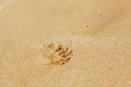 Yellow sand and footprints at the seafront. Stock Photo