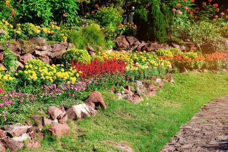 Gardening with colorful of flower at sunrise. Banque d'images