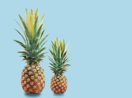 Pineapple of fresh with the blue background.