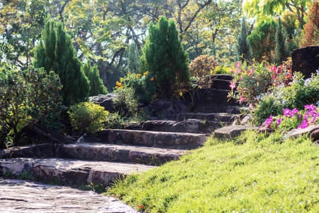 Stair of rocks with sunrise in the garden.