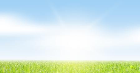 草と空のフィールド