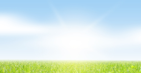 transparente: Campo de césped y cielo