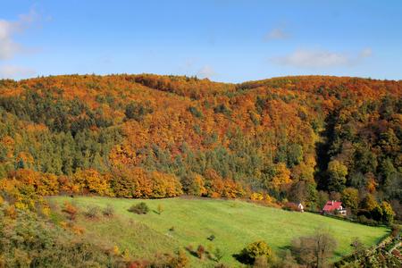 vibrant cottage: autumn landscape