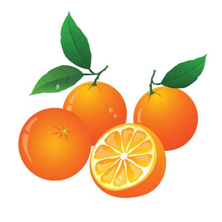 dewdrop: oranges