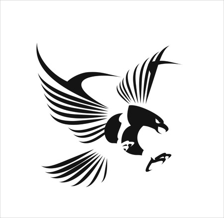 eagle: Flying Eagle, spread out its feather. black eagle on white background.